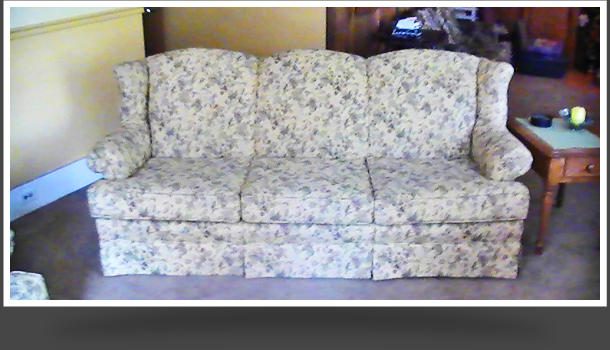 patterned couch